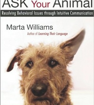 Ask your Animal book