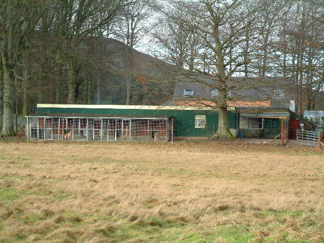 File:Dog breeding cages - geograph.org.uk - 105536.jpg